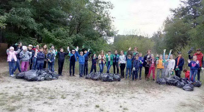 Работа школьного лесничества в 2018/2019 учебном году