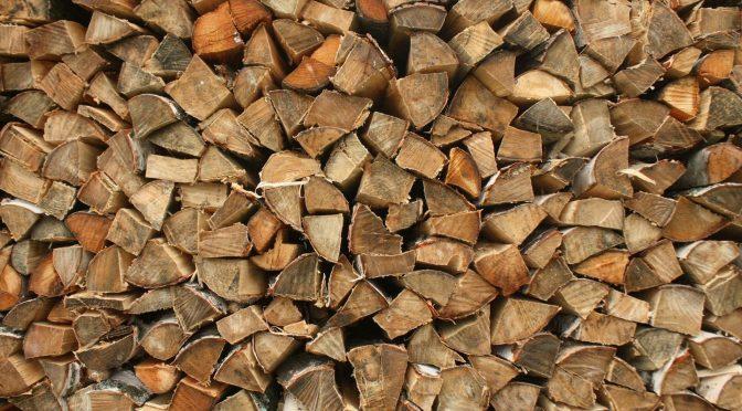 ГЛХУ «Брестский лесхоз» осуществляет продажу дров колотых различных пород