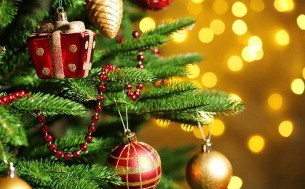Новогодние деревья, ели, сосны, букеты — стоимость