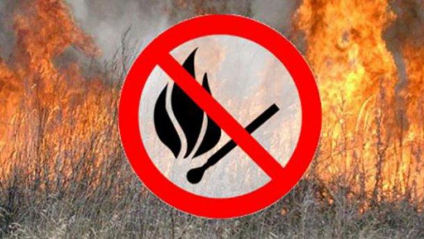 Внимание! Действует запрет на посещение лесов!