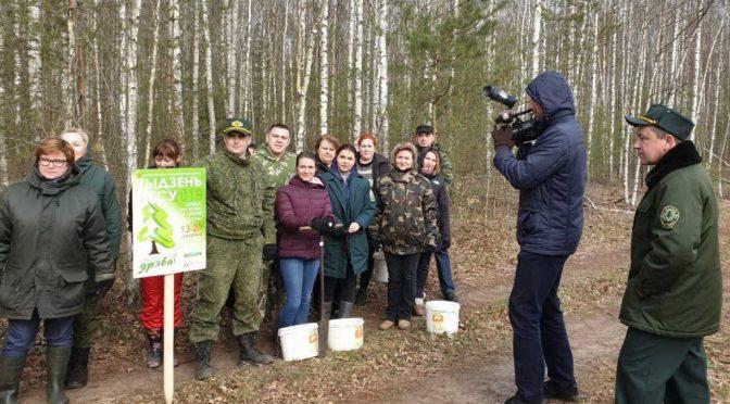 Старт акции «Неделя леса-2019» дан!