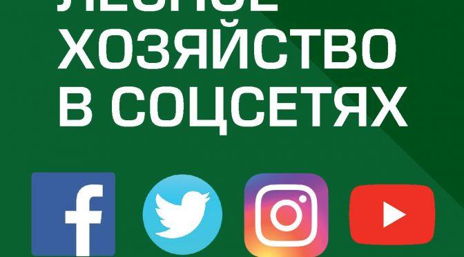Лесное хозяйство в соцсетях