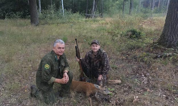 Продолжается охота на самца косули европейской