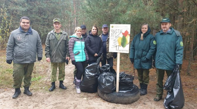 Итоги акции «Чистый лес-2020»