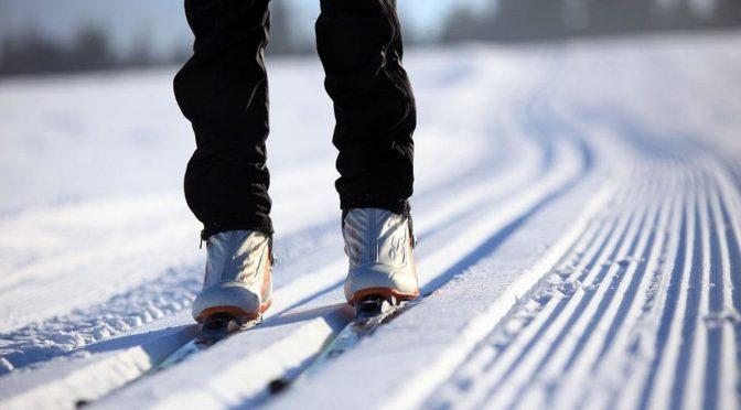 О проведении областных лыжных соревнований среди лесхозов Брестского ГПЛХО