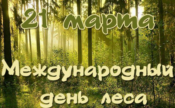 Международный день леса пройдет в Брестском лесхозе