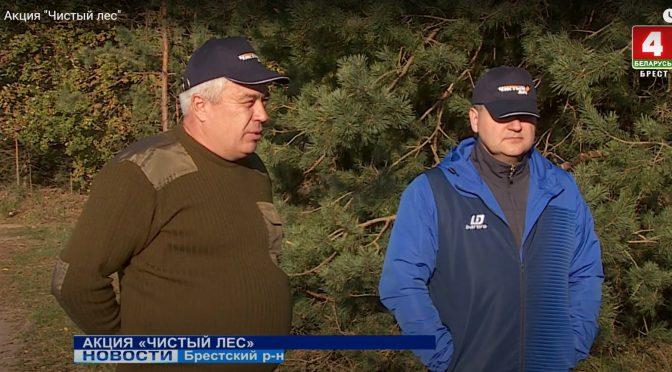 """Акция """"Чистый лес"""" прошла в Брестском лесхозе"""