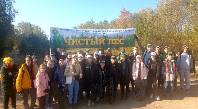 """Около 1000 человек приняли участие в акции """"Чистый лес"""". Благодарим всех за участие!"""