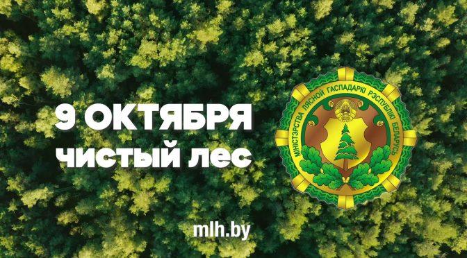 """Акция """"Чистый лес"""" пройдет в Беларуси 9 октября. Приглашаем принять участие!"""